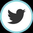 1449407994_twitter_social_media_web.png